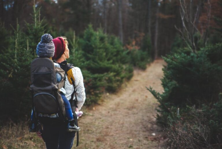 The Best Ingredients for Trail Mix For Healthy Hiking