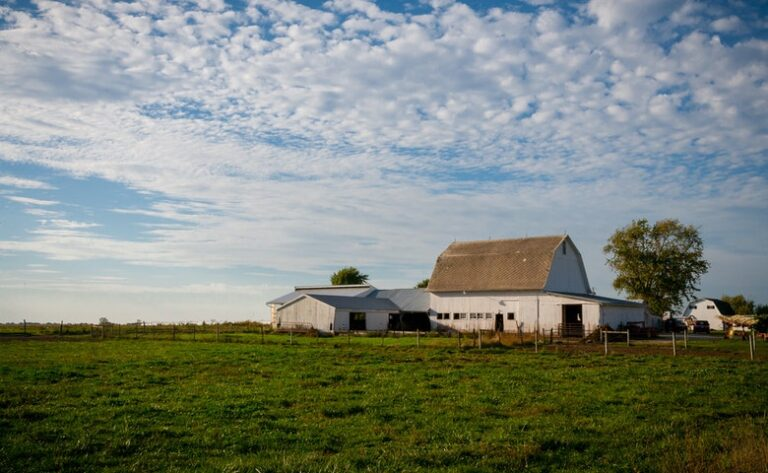 5 Midwest Traditions You Might Not Know Of